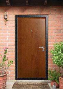 стальные двери в дом ламинат +порошок под заказ